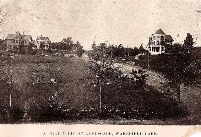wakefieldparkimage
